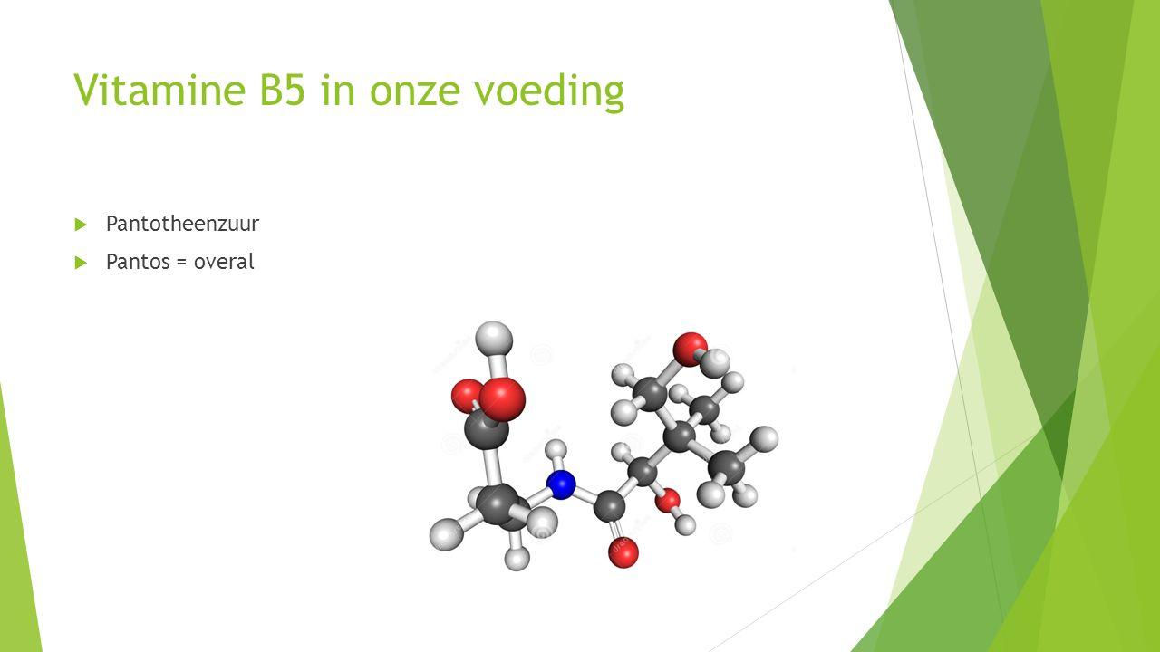 Vitamine B5 in onze voeding  Pantotheenzuur  Pantos = overal