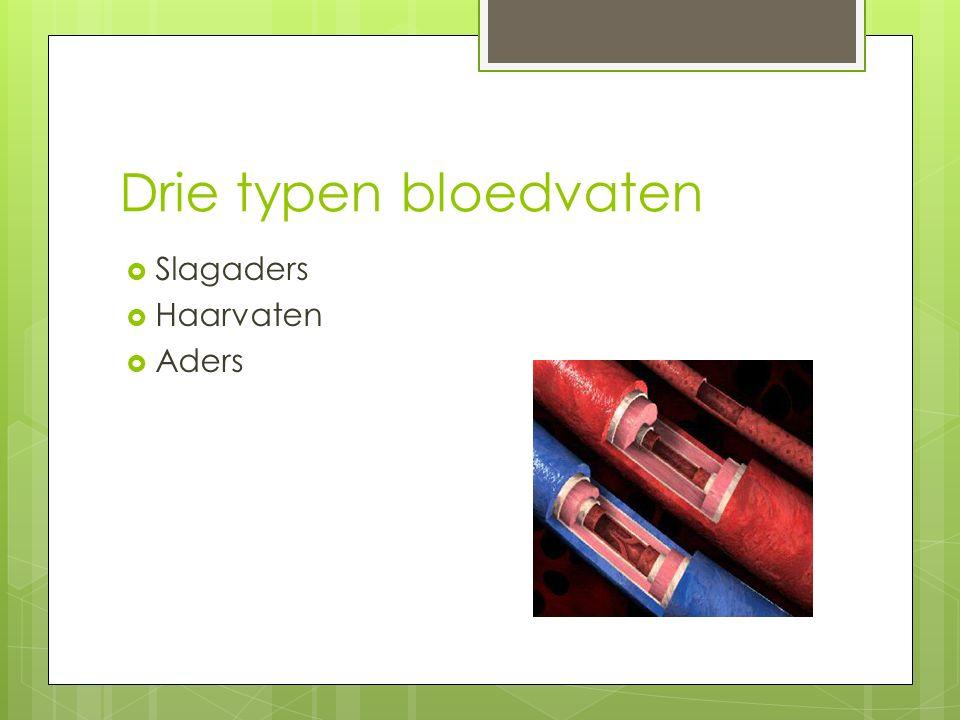 Drie typen bloedvaten  Slagaders  Haarvaten  Aders