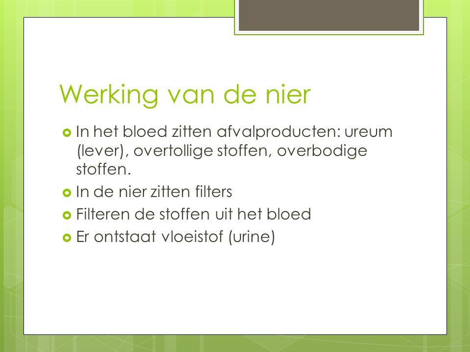 Werking van de nier  In het bloed zitten afvalproducten: ureum (lever), overtollige stoffen, overbodige stoffen.  In de nier zitten filters  Filter