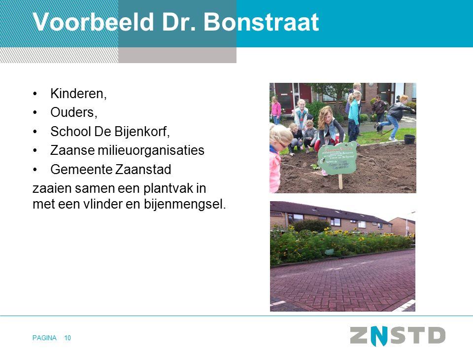 PAGINA Voorbeeld Dr. Bonstraat Kinderen, Ouders, School De Bijenkorf, Zaanse milieuorganisaties Gemeente Zaanstad zaaien samen een plantvak in met een