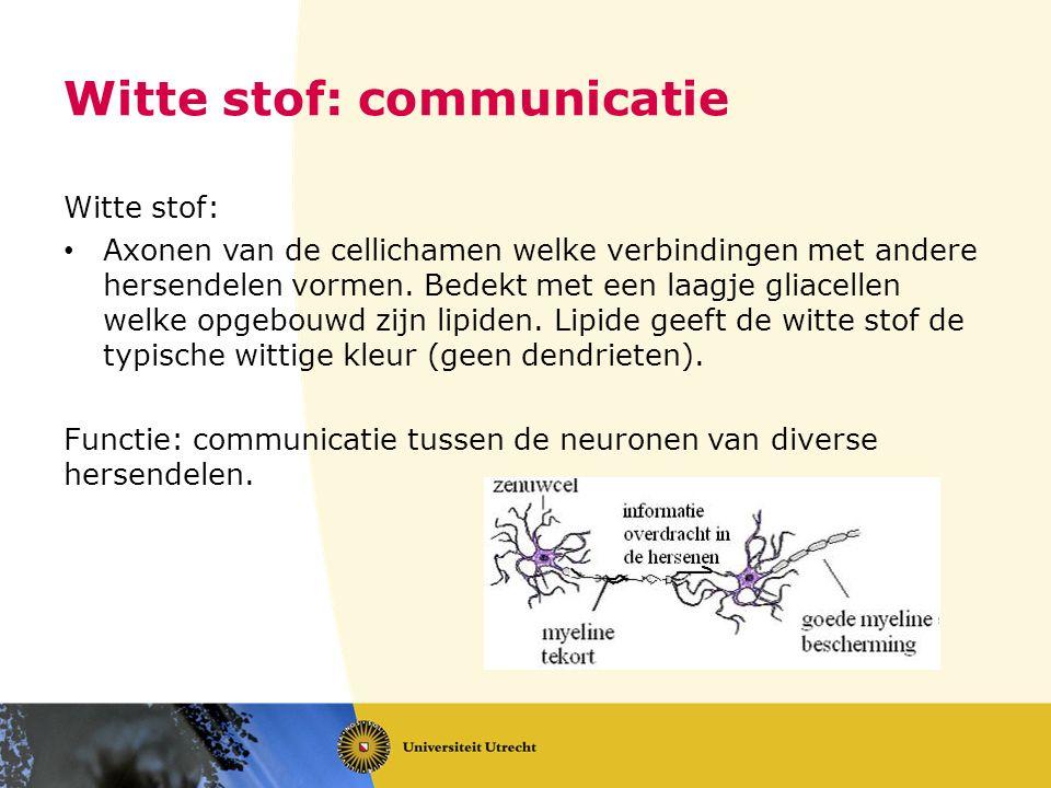 Witte stof: communicatie Witte stof: Axonen van de cellichamen welke verbindingen met andere hersendelen vormen. Bedekt met een laagje gliacellen welk