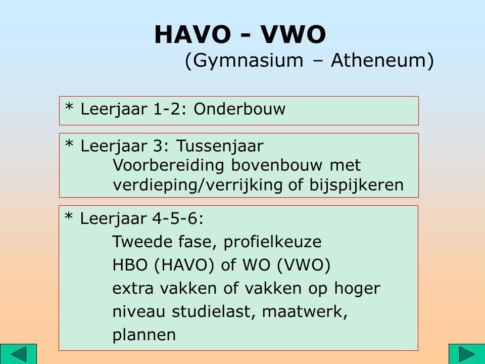 HAVO - VWO (Gymnasium – Atheneum) * Leerjaar 1-2: Onderbouw * Leerjaar 3: Tussenjaar Voorbereiding bovenbouw met verdieping/verrijking of bijspijkeren * Leerjaar 4-5-6: Tweede fase, profielkeuze HBO (HAVO) of WO (VWO) extra vakken of vakken op hoger niveau studielast, maatwerk, plannen