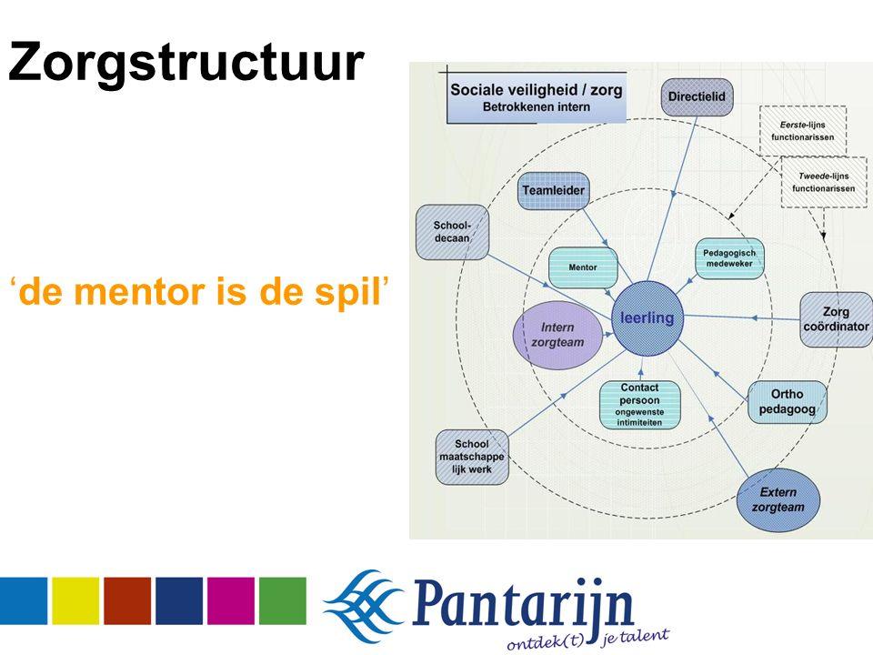 Zorgstructuur 'de mentor is de spil'