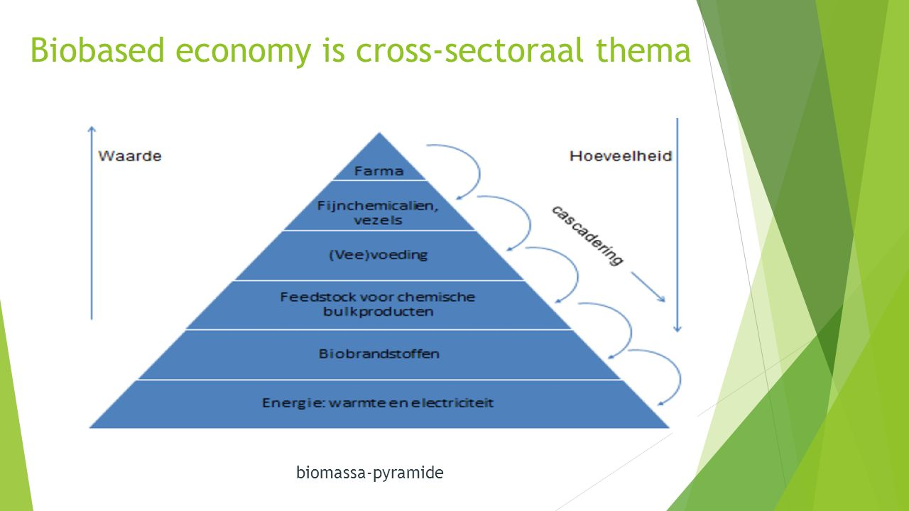 Biobased economy is cross-sectoraal thema biomassa-pyramide