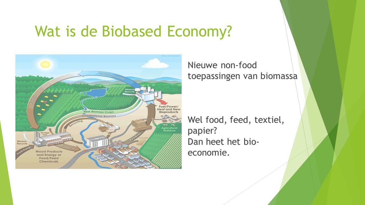 De huidige chemische sector staat onder druk….