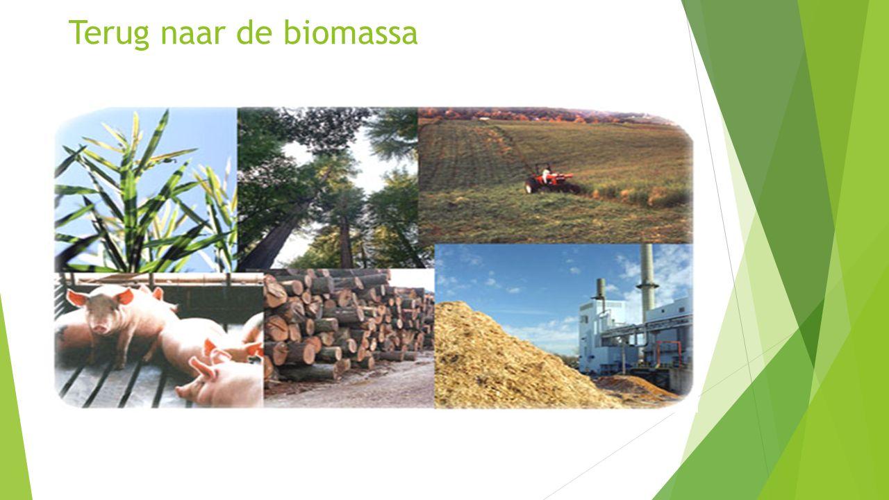 Biobased Delta Zuid-Holland  Versterken positie Haven-Industrieel Complex als global hub en industrial cluster: innovatie, clusterversterking.