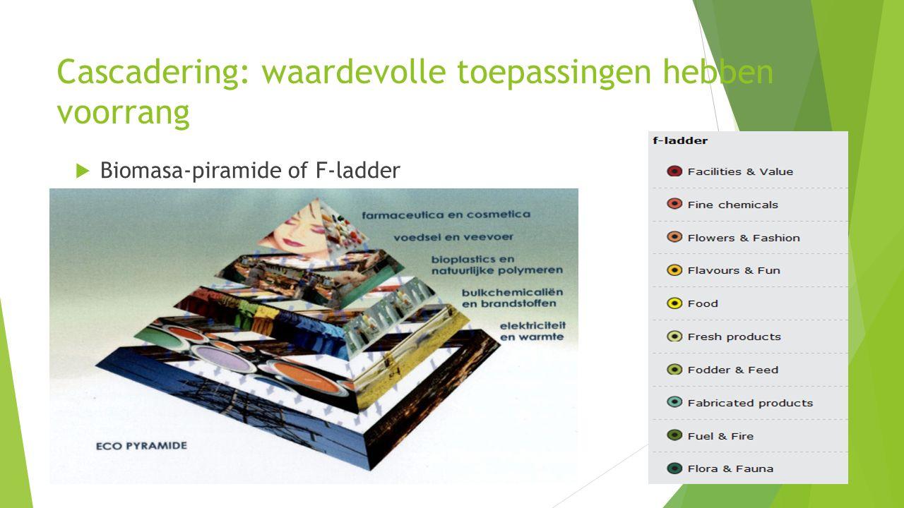 Biobased economy is cross-sectoraal thema biomassa-pyramide