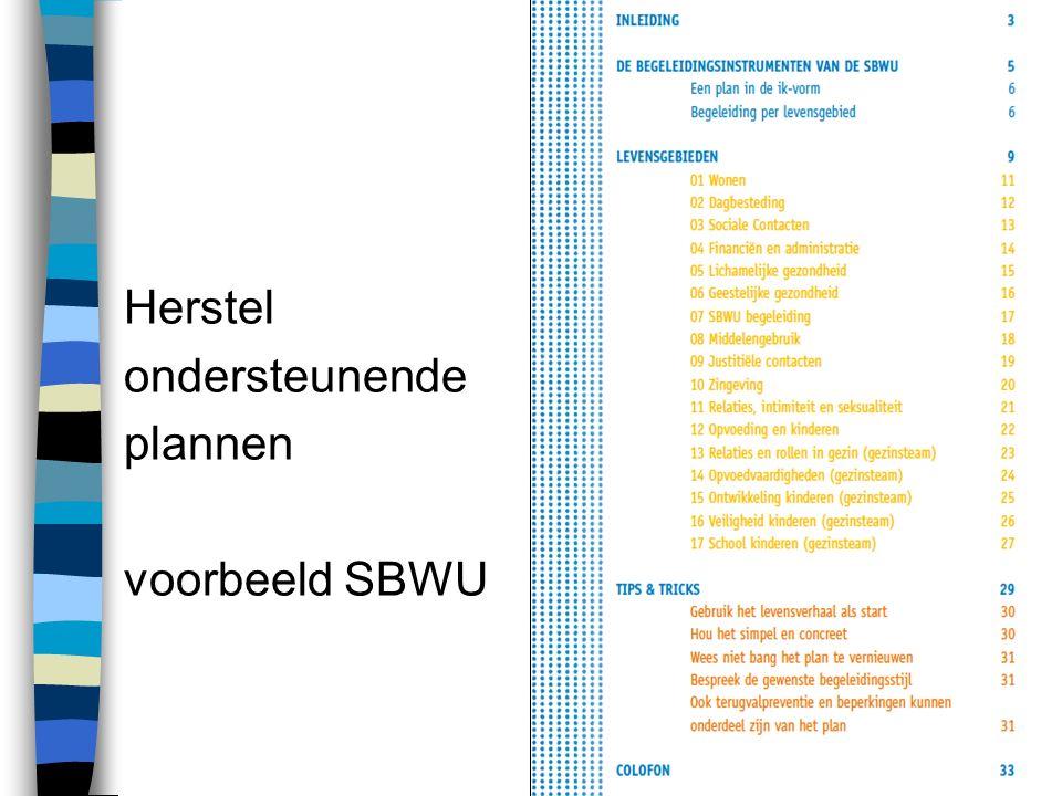 Herstel ondersteunende plannen voorbeeld SBWU