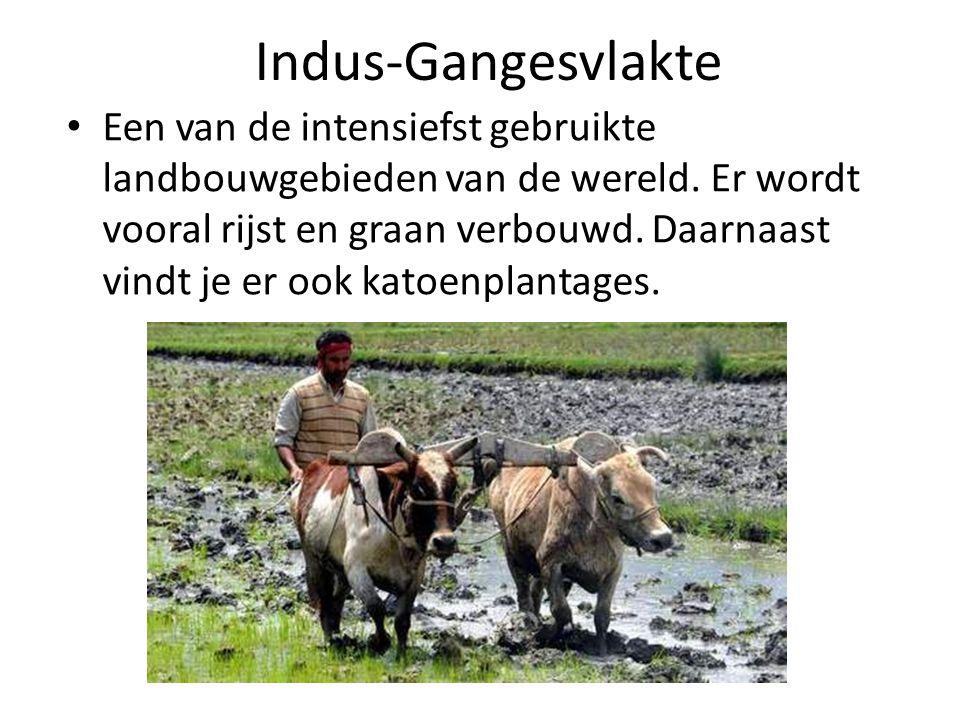 Een van de intensiefst gebruikte landbouwgebieden van de wereld.