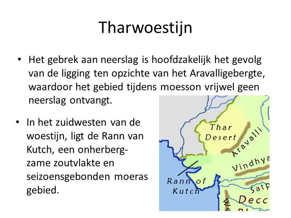 Tharwoestijn Het gebrek aan neerslag is hoofdzakelijk het gevolg van de ligging ten opzichte van het Aravalligebergte, waardoor het gebied tijdens moesson vrijwel geen neerslag ontvangt.