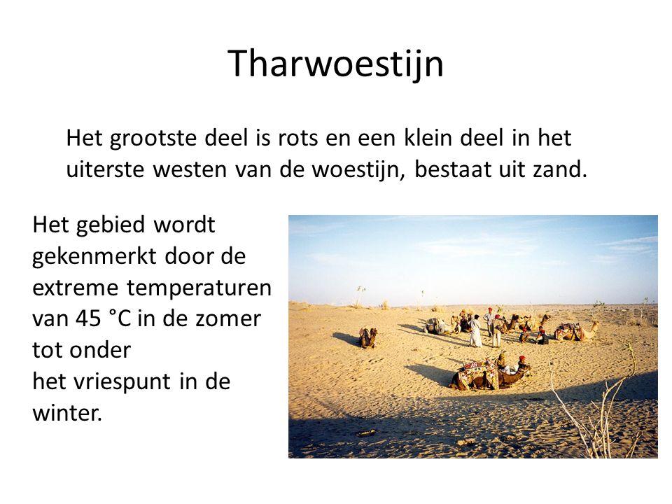 Tharwoestijn Het grootste deel is rots en een klein deel in het uiterste westen van de woestijn, bestaat uit zand.