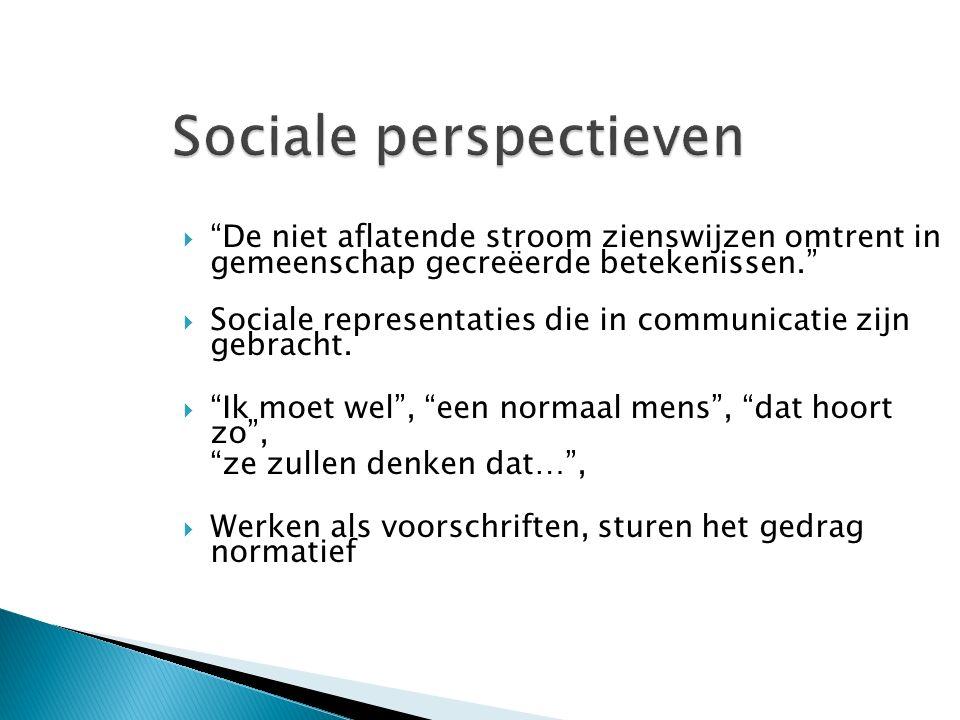  De niet aflatende stroom zienswijzen omtrent in gemeenschap gecreëerde betekenissen.  Sociale representaties die in communicatie zijn gebracht.