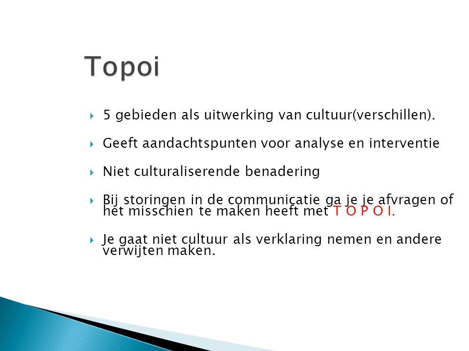  5 gebieden als uitwerking van cultuur(verschillen).