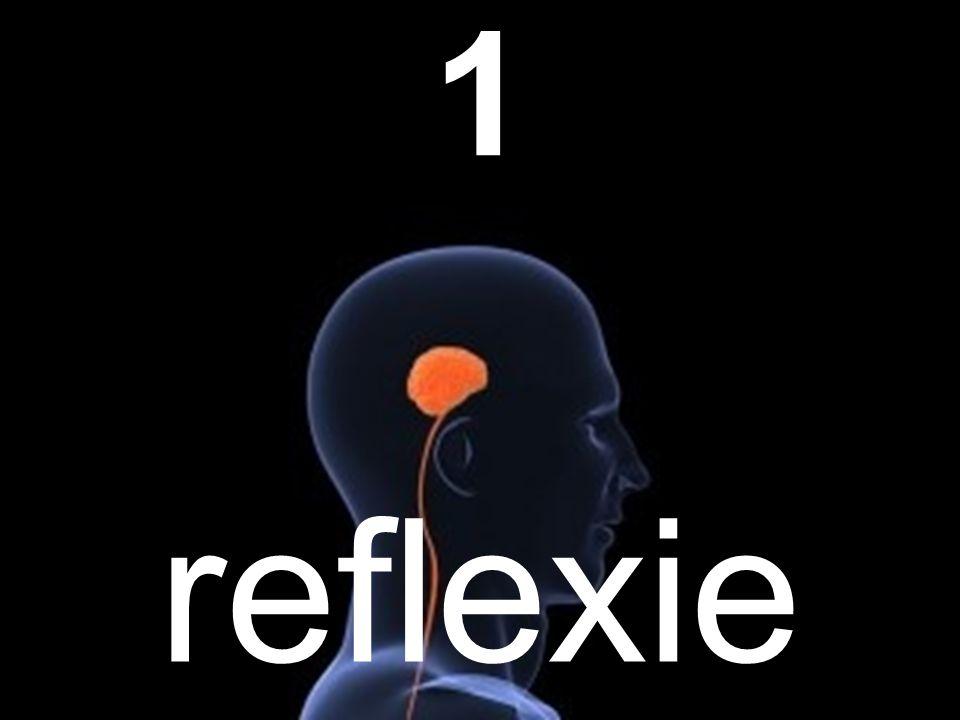reflexie 1