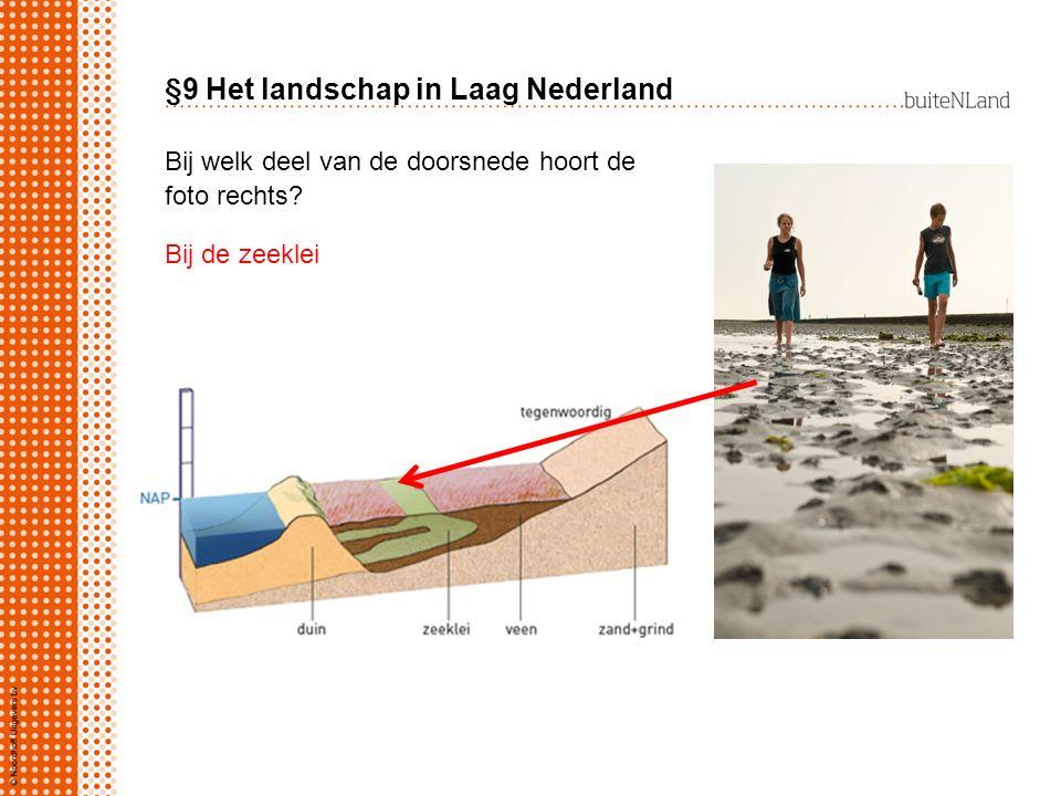 §9 Het landschap in Laag Nederland Bij welk deel van de doorsnede hoort de foto rechts? Bij de zeeklei