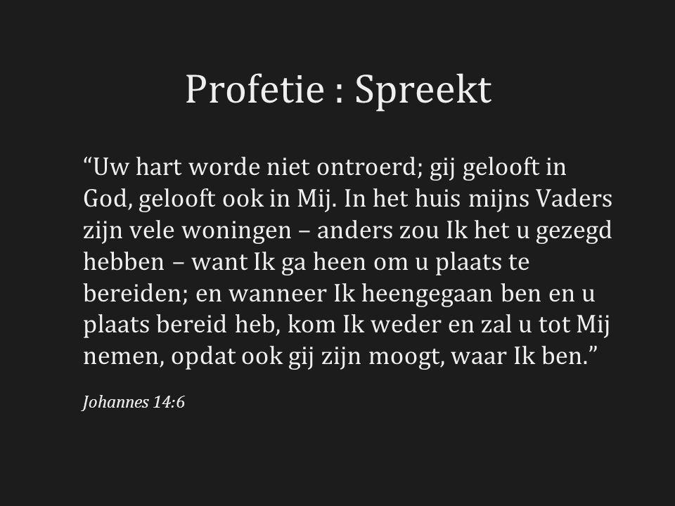 Profetie : Spreekt Uw hart worde niet ontroerd; gij gelooft in God, gelooft ook in Mij.