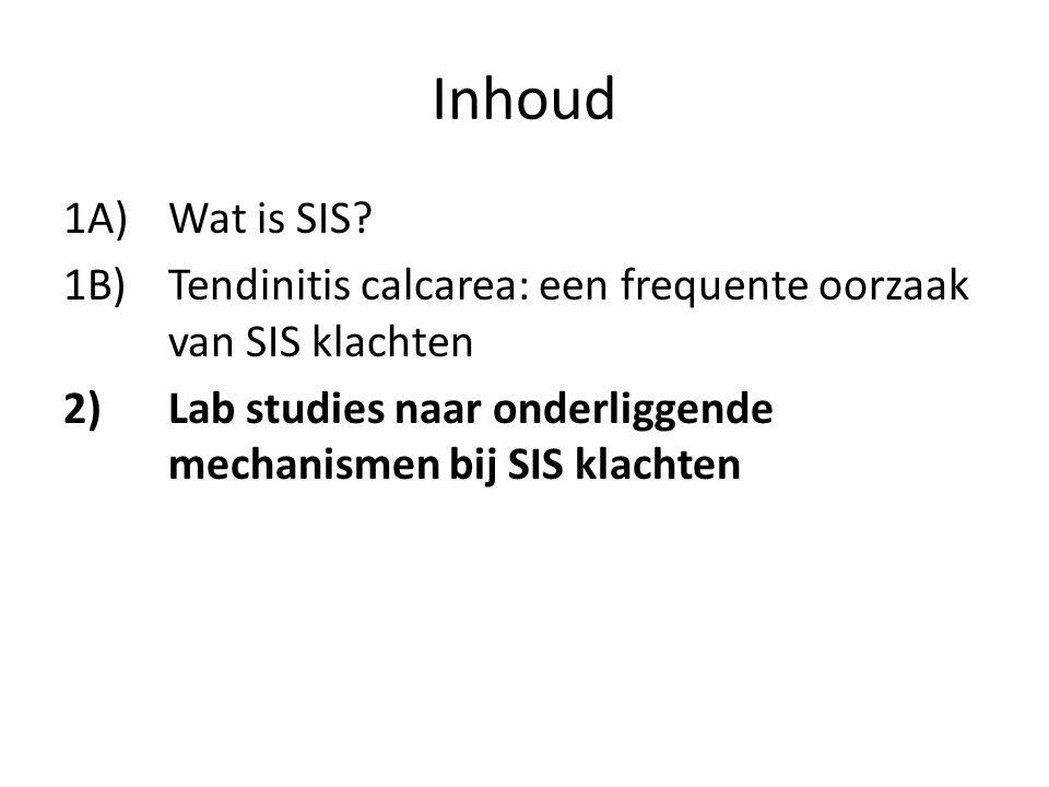 Inhoud 1A) Wat is SIS? 1B) Tendinitis calcarea: een frequente oorzaak van SIS klachten 2) Lab studies naar onderliggende mechanismen bij SIS klachten