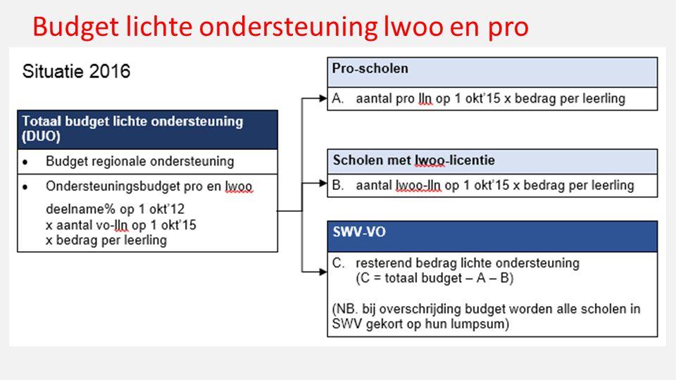 Budget lichte ondersteuning lwoo en pro