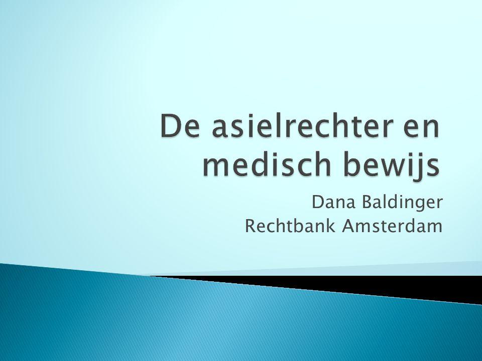 Dana Baldinger Rechtbank Amsterdam