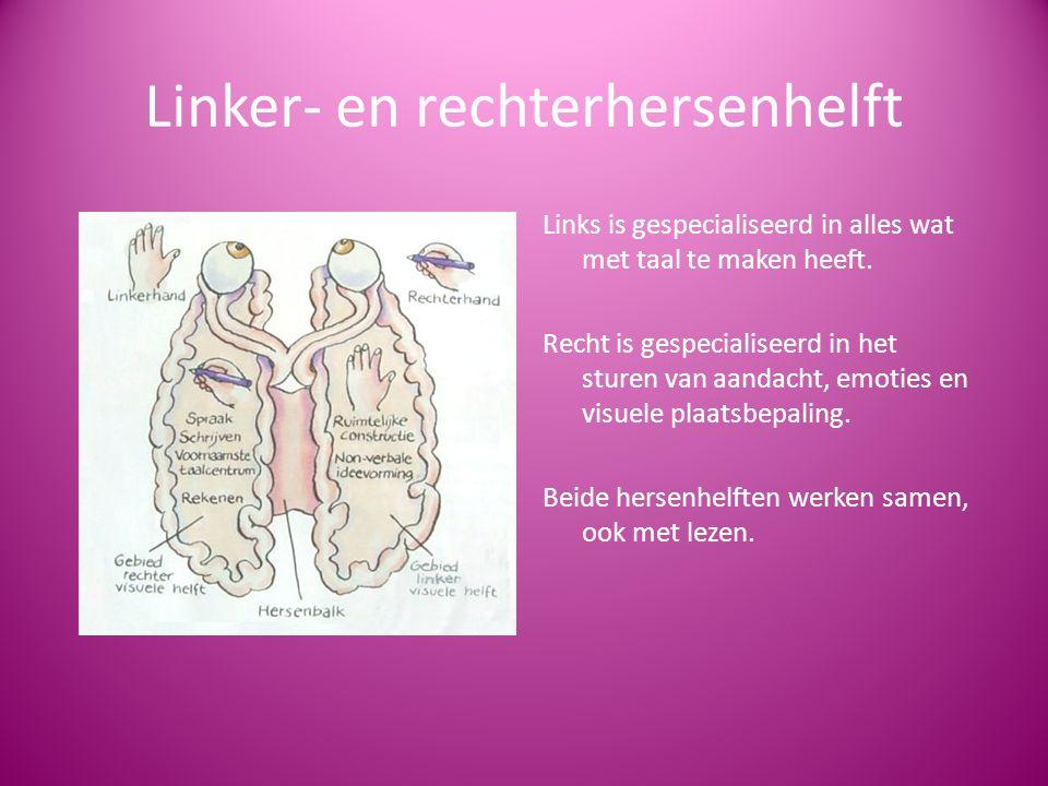 Linker- en rechterhersenhelft Links is gespecialiseerd in alles wat met taal te maken heeft.