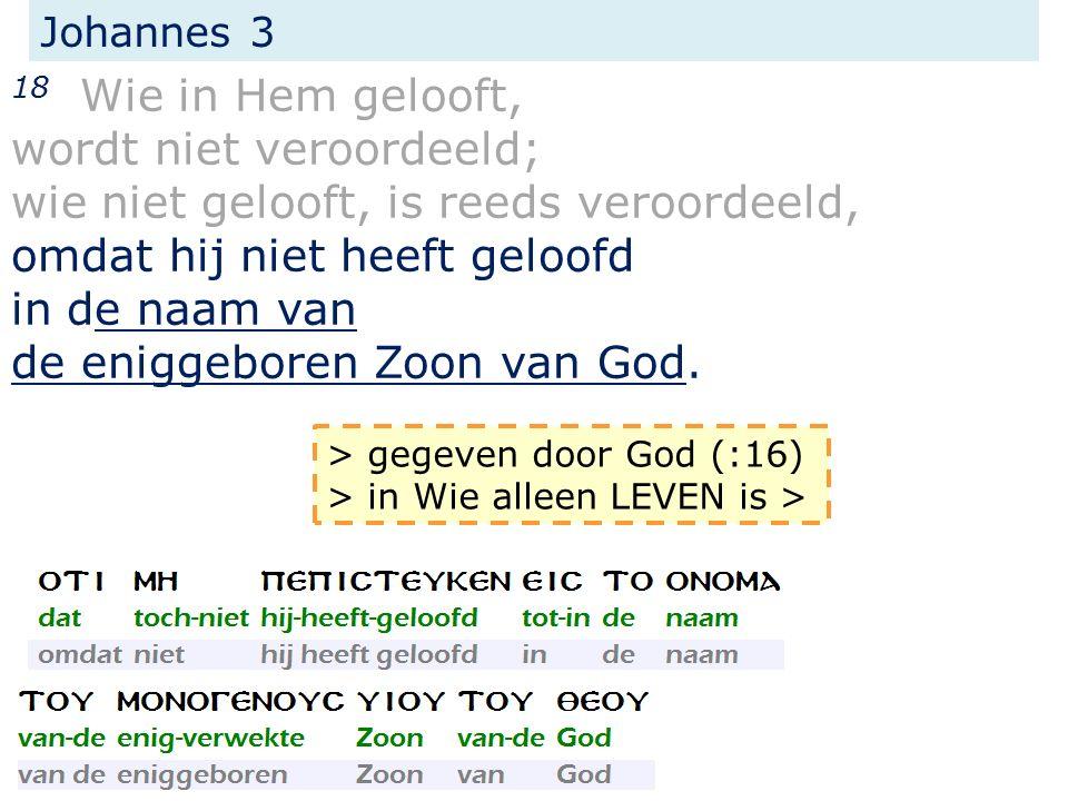 Johannes 3 18 Wie in Hem gelooft, wordt niet veroordeeld; wie niet gelooft, is reeds veroordeeld, omdat hij niet heeft geloofd in de naam van de enigg
