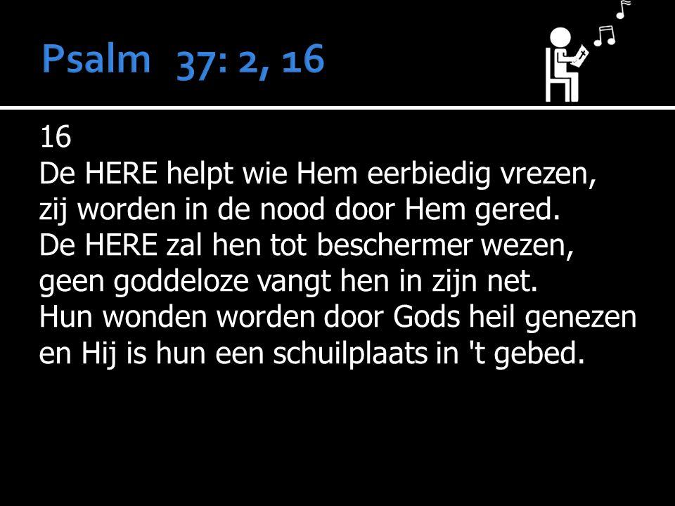 16 De HERE helpt wie Hem eerbiedig vrezen, zij worden in de nood door Hem gered.