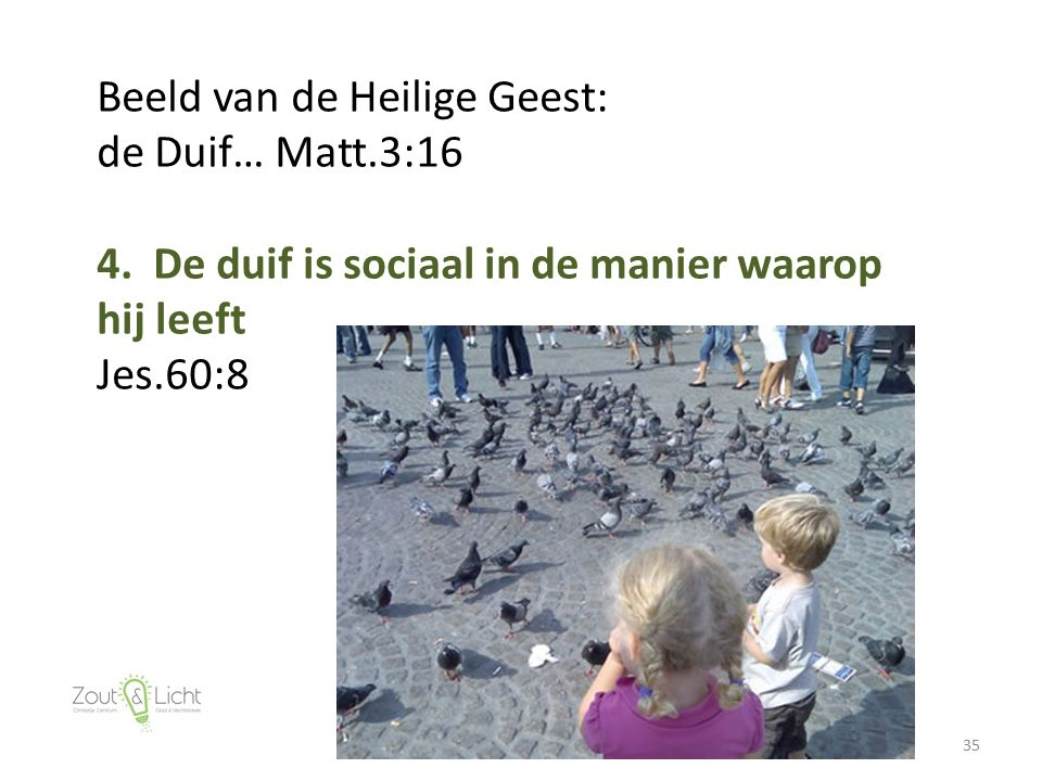 35 Beeld van de Heilige Geest: de Duif… Matt.3:16 4. De duif is sociaal in de manier waarop hij leeft Jes.60:8