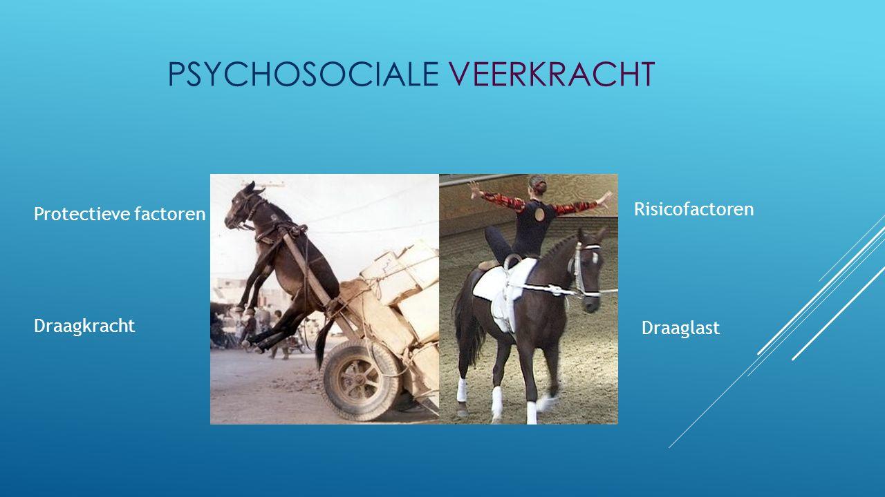 Draagkracht Protectieve factoren Draaglast Risicofactoren PSYCHOSOCIALE VEERKRACHT