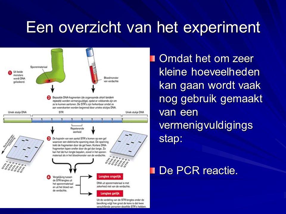 Een overzicht van het experiment Omdat het om zeer kleine hoeveelheden kan gaan wordt vaak nog gebruik gemaakt van een vermenigvuldigings stap: De PCR reactie.