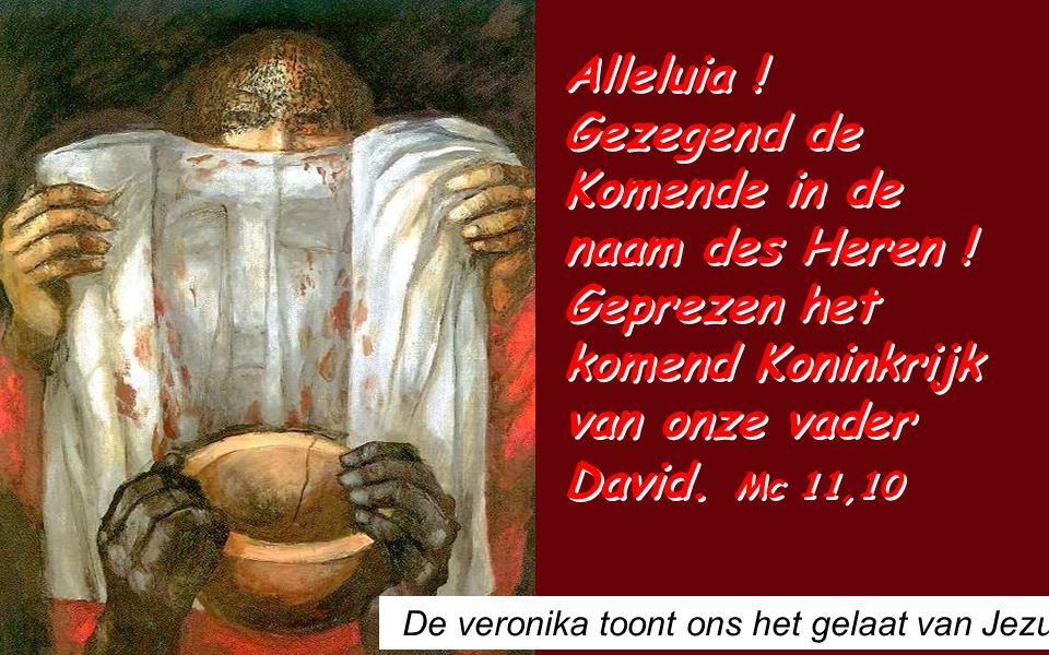 Apoc 1,5-8 Broeders en zusters, Genade zij u van Jezus Christus, de getrouwe getuige, de eerstgeborene van de doden en de vorst van de koningen der aarde.