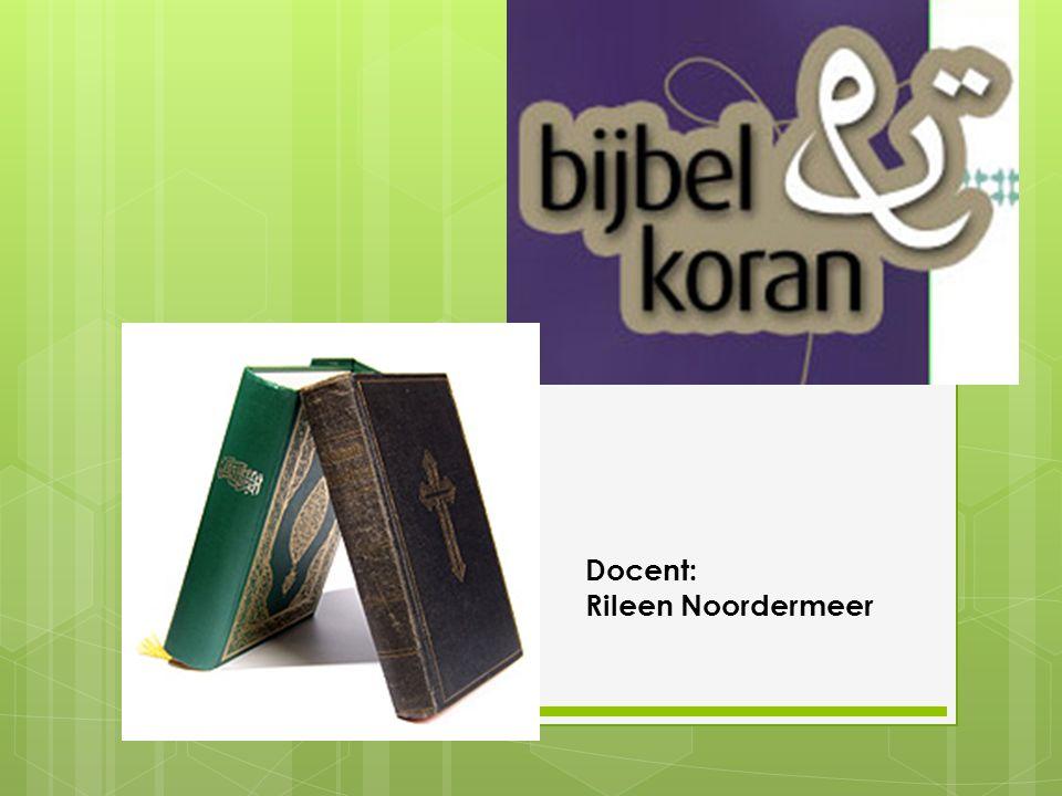 Docent: Rileen Noordermeer
