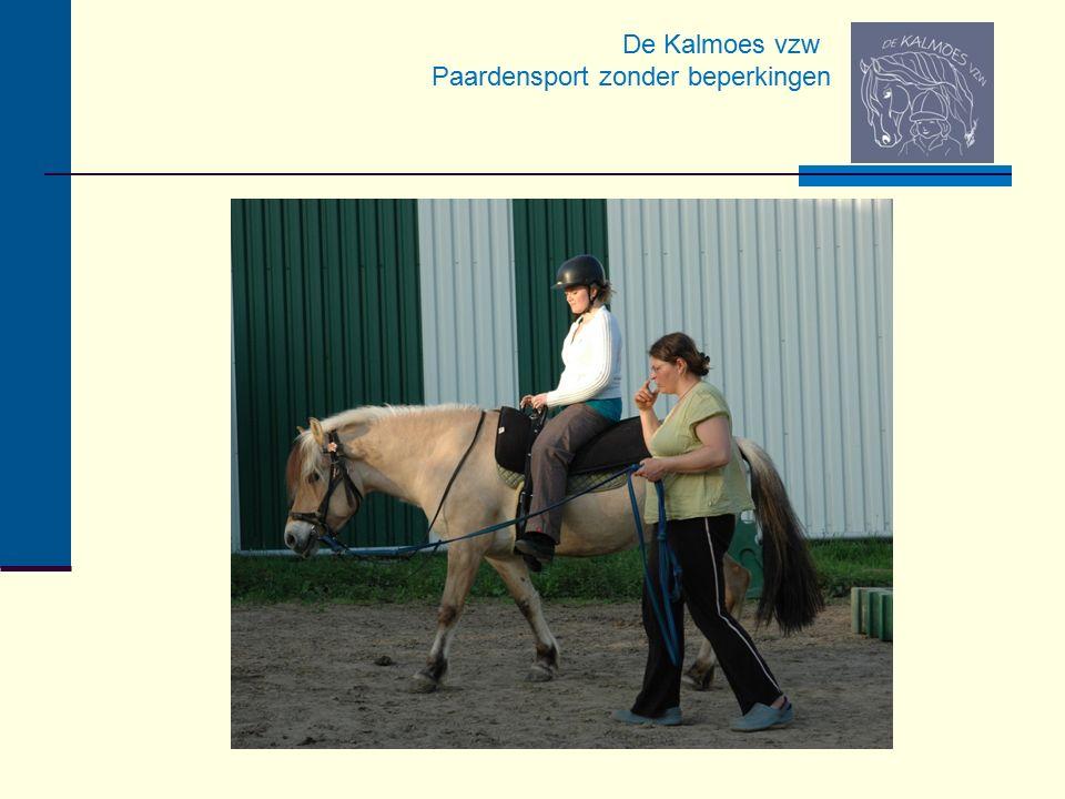 De Kalmoes vzw Paardensport zonder beperkingen