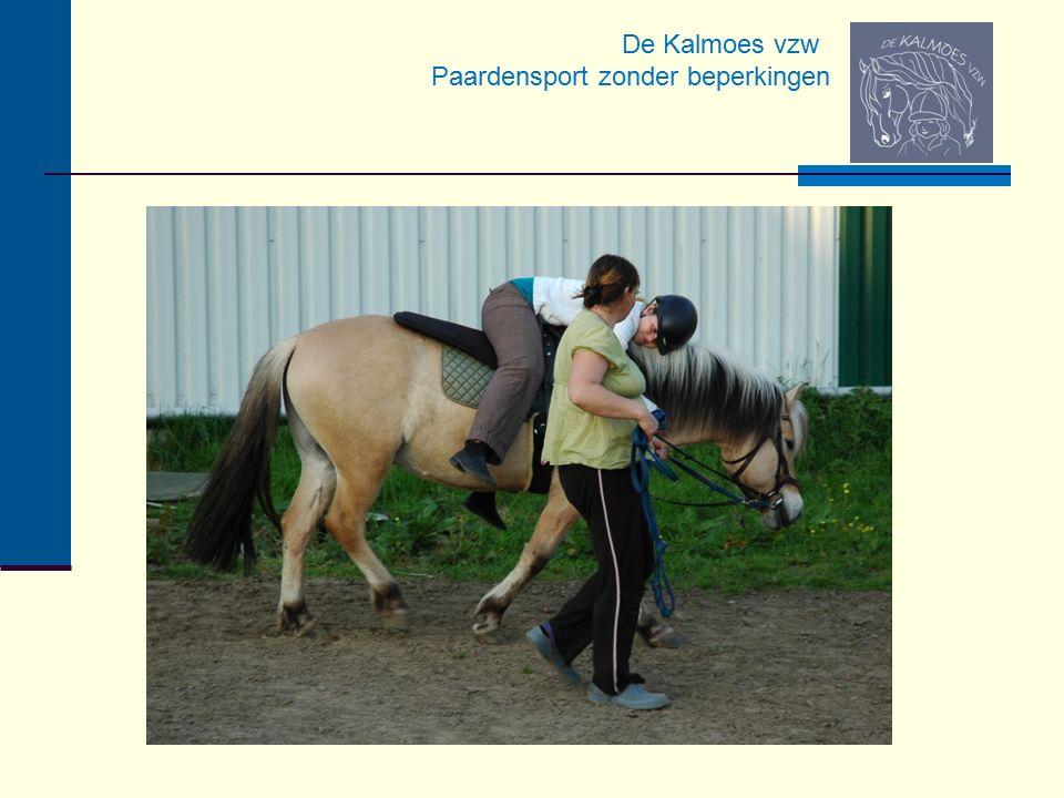 Veilig Langdurige opleiding van de paarden/dieren Voor ieder's wil en nood Aangepaste zadels, teugels en veiligheidsstijgbeugels Rolstoelkoets voor rolstoelgebruikers Paardvriendelijk en respectvol Doorgroeimogelijkheden