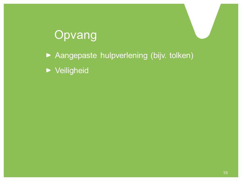 Opvang Aangepaste hulpverlening (bijv. tolken) Veiligheid 19