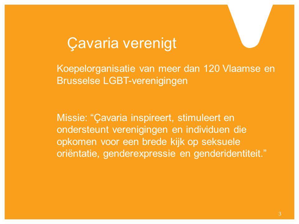 Çavaria verenigt Koepelorganisatie van meer dan 120 Vlaamse en Brusselse LGBT-verenigingen Missie: Çavaria inspireert, stimuleert en ondersteunt verenigingen en individuen die opkomen voor een brede kijk op seksuele oriëntatie, genderexpressie en genderidentiteit. 3