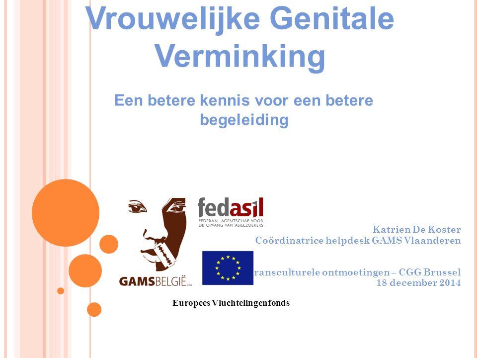 Vrouwelijke Genitale Verminking Katrien De Koster Coördinatrice helpdesk GAMS Vlaanderen Transculturele ontmoetingen – CGG Brussel 18 december 2014 Eu