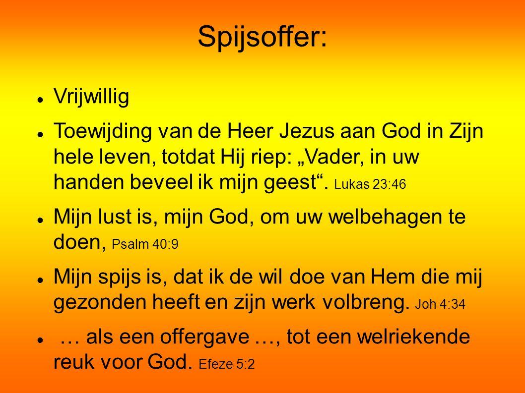 """Spijsoffer: Vrijwillig Toewijding van de Heer Jezus aan God in Zijn hele leven, totdat Hij riep: """"Vader, in uw handen beveel ik mijn geest ."""