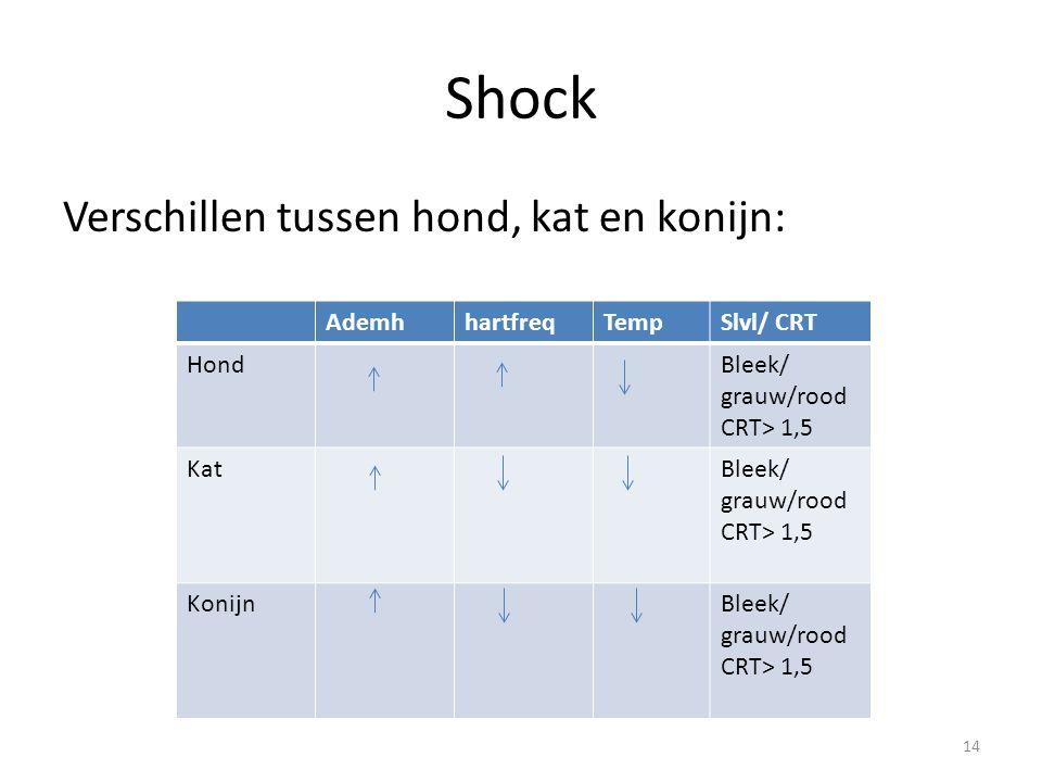 Shock Verschillen tussen hond, kat en konijn: AdemhhartfreqTempSlvl/ CRT HondBleek/ grauw/rood CRT> 1,5 KatBleek/ grauw/rood CRT> 1,5 KonijnBleek/ grauw/rood CRT> 1,5 14