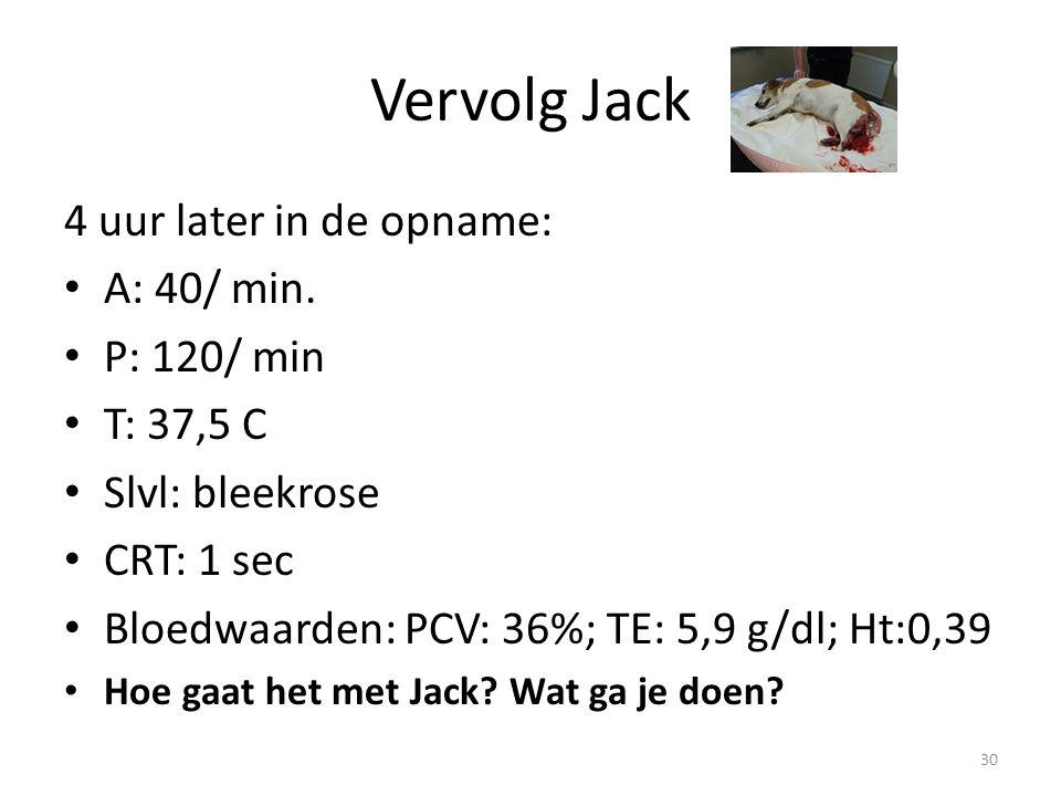 Vervolg Jack 4 uur later in de opname: A: 40/ min. P: 120/ min T: 37,5 C Slvl: bleekrose CRT: 1 sec Bloedwaarden: PCV: 36%; TE: 5,9 g/dl; Ht:0,39 Hoe