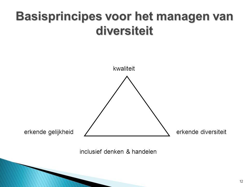 12 Basisprincipes voor het managen van diversiteit kwaliteit erkende diversiteiterkende gelijkheid inclusief denken & handelen