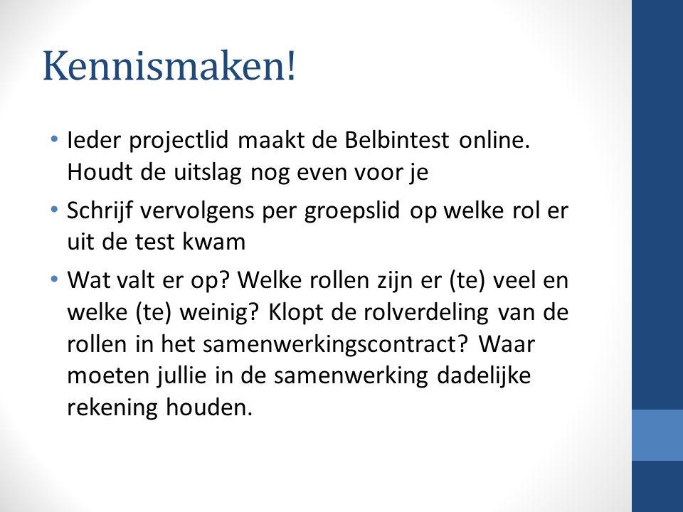 Kennismaken.Ieder projectlid maakt de Belbintest online.