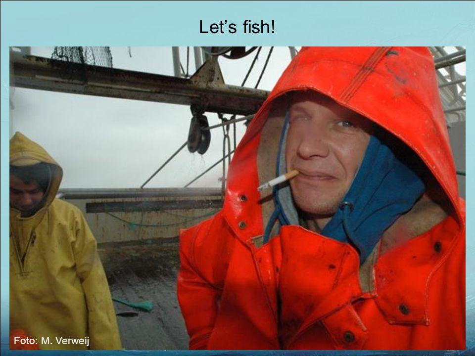 Foto: M. Verweij Let's fish!