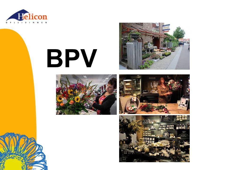 Even voorstellen BPV- coördinator * Marij Verheugen * Bloem en vormgeving en in- en outdoor design * aanvraag goedkeuren en voorstelformulier verwerken * vragen rondom BPV beantwoorden