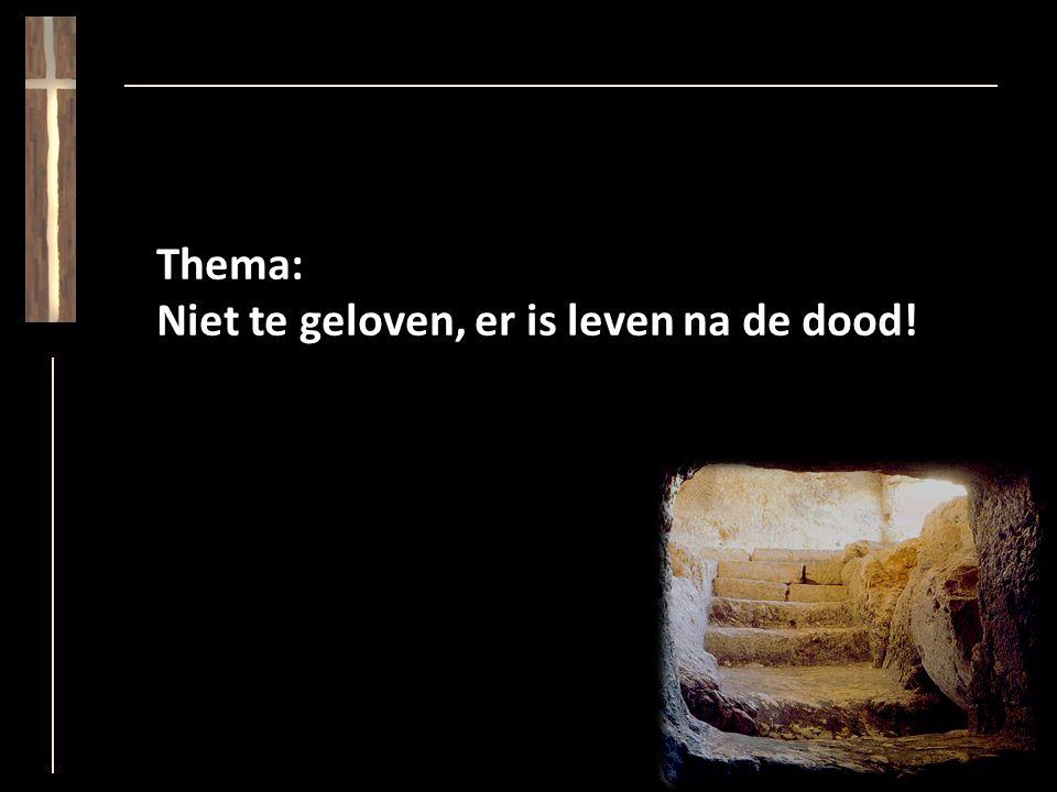 Thema: Niet te geloven, er is leven na de dood!