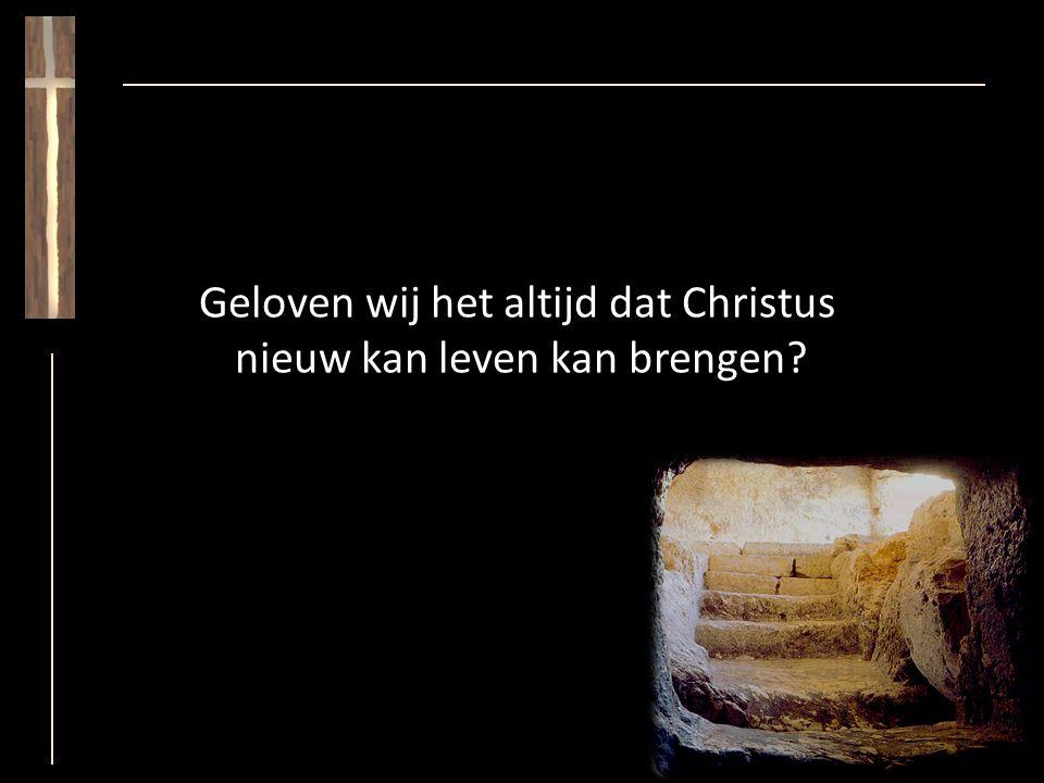 Geloven wij het altijd dat Christus nieuw kan leven kan brengen?