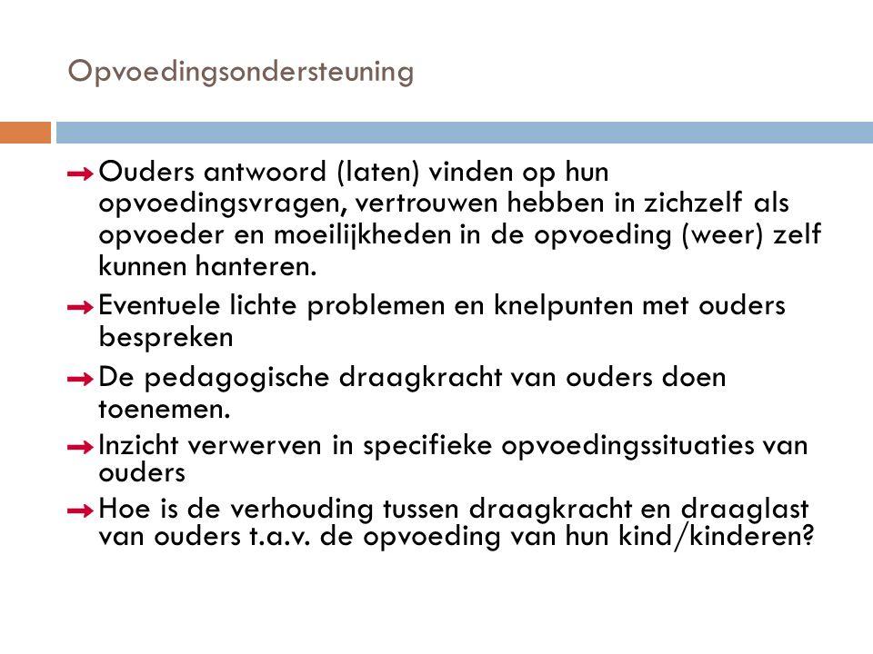 Toetsing  Toetsgesprek (week 8 en week 9) zie bijlage 6  De kritische analyse van het toetsgesprek  Het eindverslag