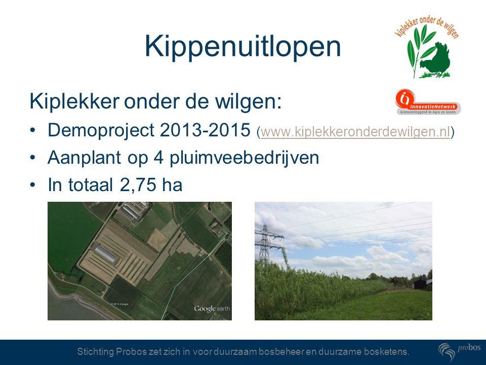 Stichting Probos zet zich in voor duurzaam bosbeheer en duurzame bosketens. Kippenuitlopen Kiplekker onder de wilgen: Demoproject 2013-2015 (www.kiple