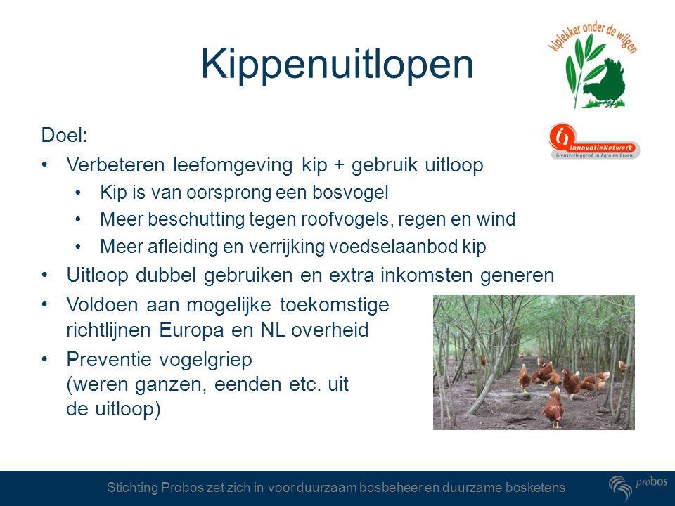 Stichting Probos zet zich in voor duurzaam bosbeheer en duurzame bosketens. Kippenuitlopen Doel: Verbeteren leefomgeving kip + gebruik uitloop Kip is