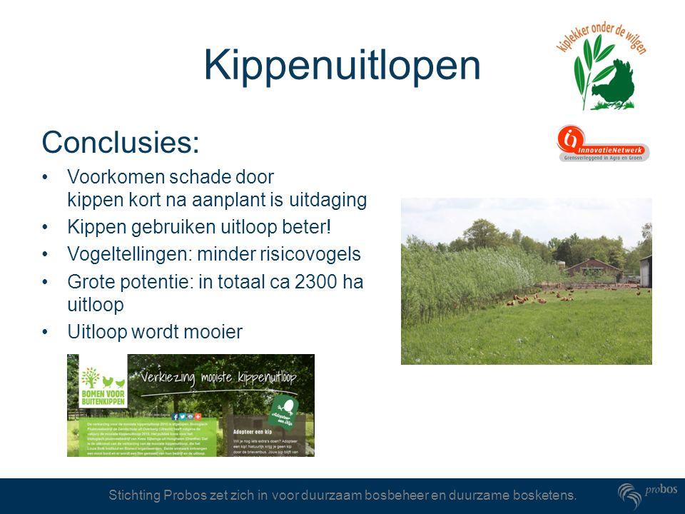 Stichting Probos zet zich in voor duurzaam bosbeheer en duurzame bosketens. Kippenuitlopen Conclusies: Voorkomen schade door kippen kort na aanplant i