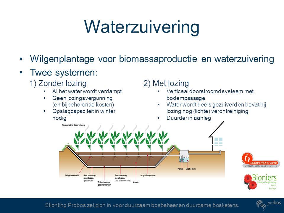 Stichting Probos zet zich in voor duurzaam bosbeheer en duurzame bosketens. Waterzuivering Wilgenplantage voor biomassaproductie en waterzuivering Twe